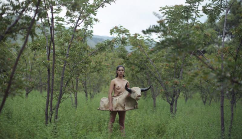 Serie fotográfica MADRE, de Marisol Mendez.